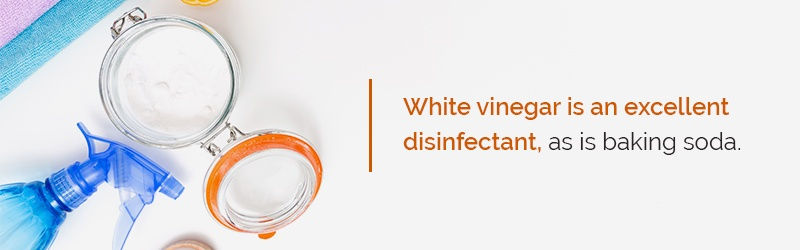 white vinegar disinfectant